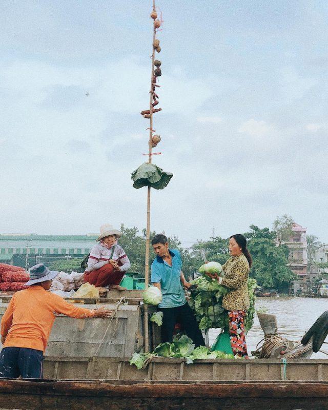 Cây bẹo – đặc trưng chợ nổi miền Tây